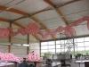 roze-pur-panorama1